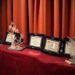 Miniaturitalia_contest_2016_10
